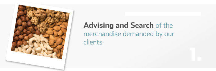 Advising and Search of the merchandise